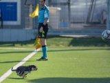 31_Nocerina_Gravina_Play_Off_ForzaNocerina.it_